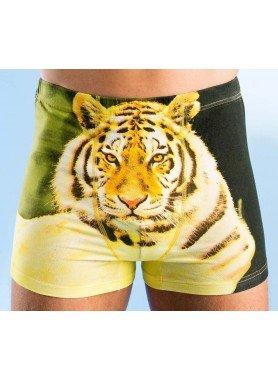 "Herren-Boxer ""Tiger"" 4 Stück"