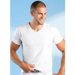 Shirt-Kaurzarm, V-Ausschnitt, 2 Stück