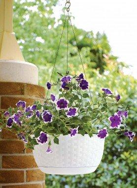 Blumen-Topf rund,hängen weiss - 1 - Ronja.ch