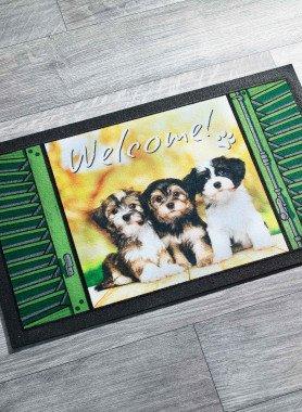 """Paillasson """"WELCOME"""" avec châtons"""