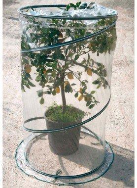 Serra a spirale  per piante O 70, H 110cm