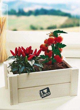 Kräuter-Box,Tomaten/Chillis - 1 - Ronja.ch