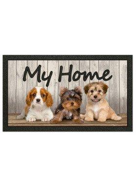 """Zerbino  """"My Home"""" cuccioli"""